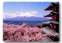 Япон улсын зүрхэнд орших ШИЗҮОКА муж нь олон улсын солилцооны төв бүс юм.